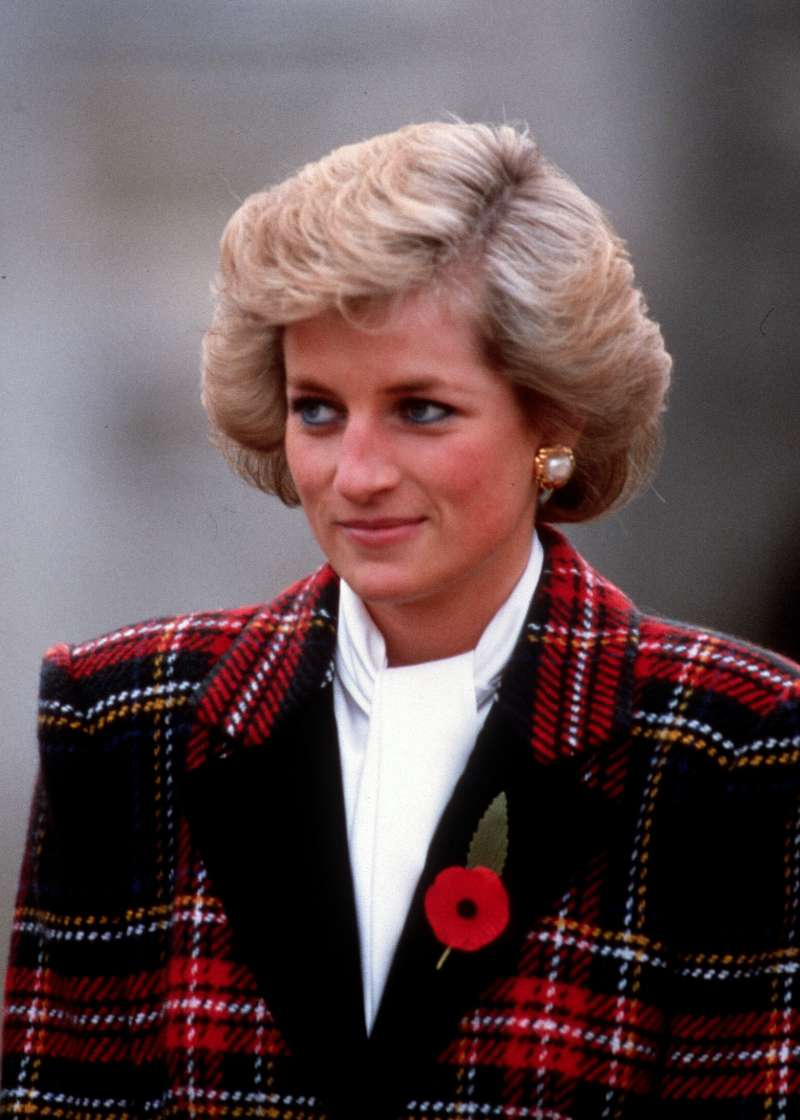 Lady Di's Last Will: How Diana's Sister And Mother Changed It In Favor Of Princes William And Harry