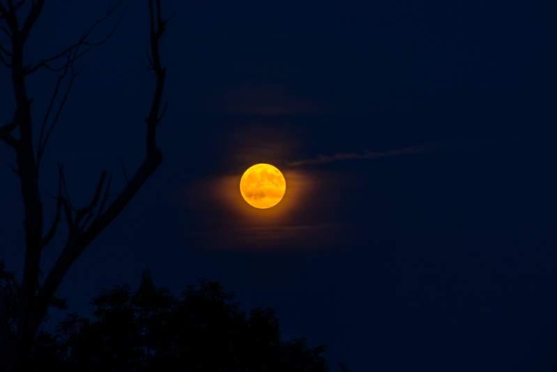 La luna llena de Esturión está aquí: trae limpieza energética y las transformaciones esperadas