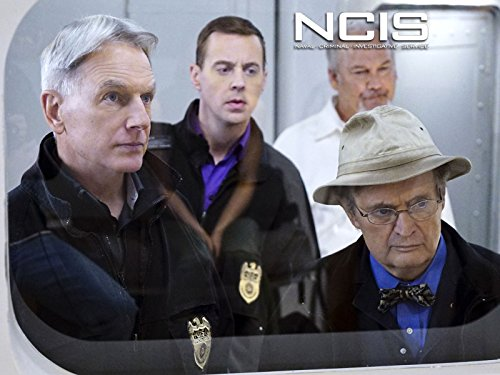 """""""Harmon Is A Very Special Individual"""": 'NCIS's Sean Murray On What It's Like To Work With Mark Harmon""""Harmon Is A Very Special Individual"""": 'NCIS's Sean Murray On What It's Like To Work With Mark Harmon""""Harmon Is A Very Special Individual"""": 'NCIS's Sean Murray On What It's Like To Work With Mark Harmon""""Harmon Is A Very Special Individual"""": 'NCIS's Sean Murray On What It's Like To Work With Mark Harmon"""