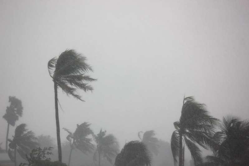 Le autorità avvertono i residenti: l'evacuazione continua mentre l'uragano Michael avanza verso la Florida