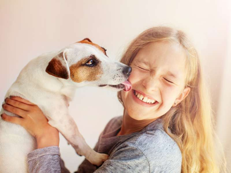 Moment Of Truth! Studies Have Confirmed That Dogs Can Sense Bad People. How?dog
