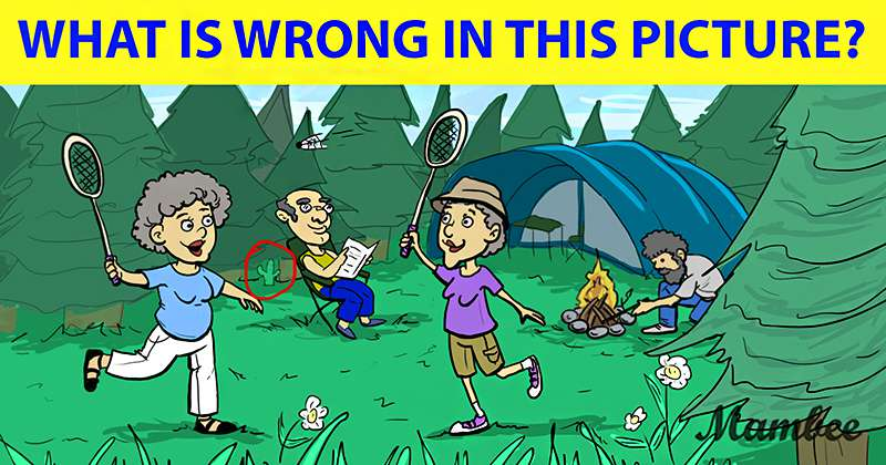 Four People Are Having Fun Time In The Forest, But Something Is Wrong. Can You Spot It?Four People Are Having Fun Time In The Forest, But Something Is Wrong. Can You Spot It?Four People Are Having Fun Time In The Forest, But Something Is Wrong. Can You Spot It?