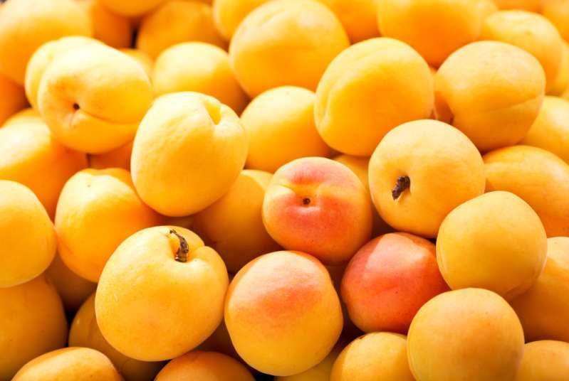 Сладкая ягодка или кислый фрукт? Плодово-ягодный гороскоп для каждого знака зодиака!Сладкая ягодка или кислый фрукт? Плодово-ягодный гороскоп для каждого знака зодиака!Сладкая ягодка или кислый фрукт? Плодово-ягодный гороскоп для каждого знака зодиака!Сладкая ягодка или кислый фрукт? Плодово-ягодный гороскоп для каждого знака зодиака!Сладкая ягодка или кислый фрукт? Плодово-ягодный гороскоп для каждого знака зодиака!Сладкая ягодка или кислый фрукт? Плодово-ягодный гороскоп для каждого знака зодиака!Сладкая ягодка или кислый фрукт? Плодово-ягодный гороскоп для каждого знака зодиака!Сладкая ягодка или кислый фрукт? Плодово-ягодный гороскоп для каждого знака зодиака!Сладкая ягодка или кислый фрукт? Плодово-ягодный гороскоп для каждого знака зодиака!