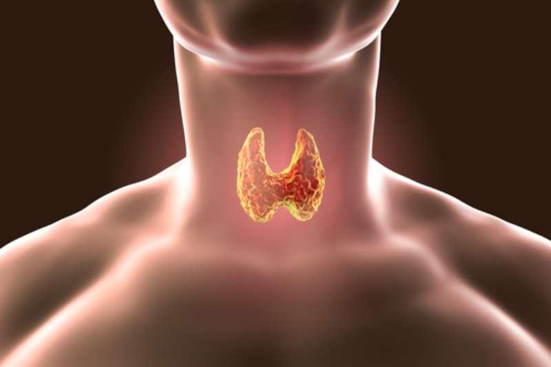 Le patologie tiroidee sono spesso sottovalutate ai primi stadi: quali sono i sintomi da non ignorare?Le patologie tiroidee sono spesso sottovalutate ai primi stadi: quali sono i sintomi da non ignorare?Le patologie tiroidee sono spesso sottovalutate ai primi stadi: quali sono i sintomi da non ignorare?Le patologie tiroidee sono spesso sottovalutate ai primi stadi: quali sono i sintomi da non ignorare?