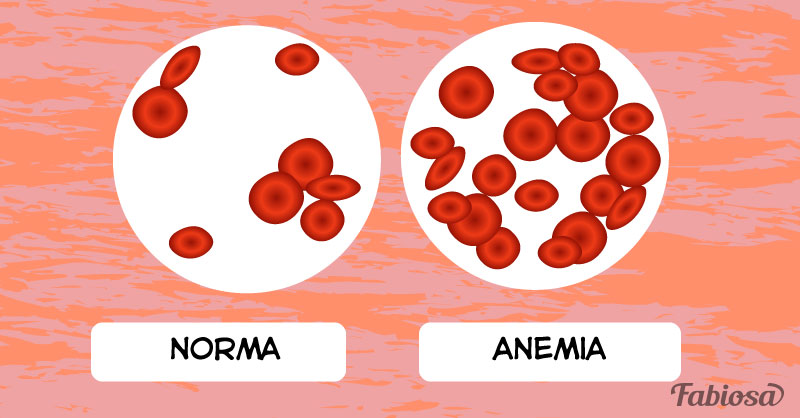 What does elevated hemoglobin mean