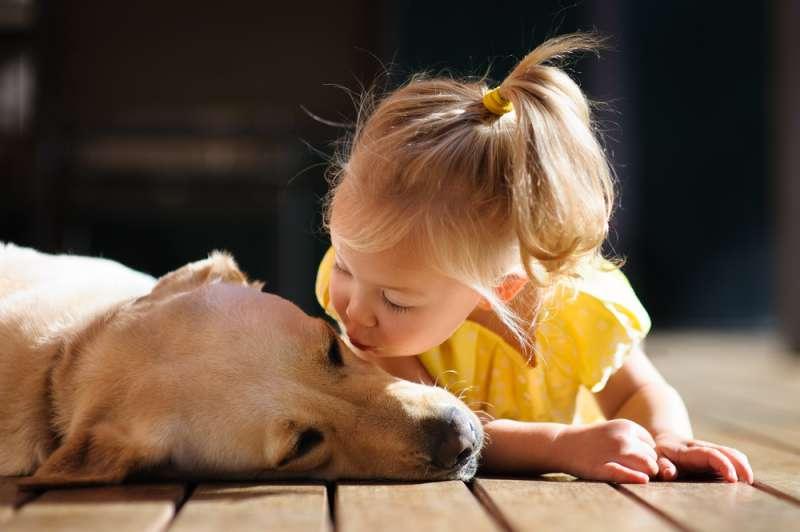 Supieron que la niñera era mala con su hijo de 7 meses gracias a que el perro era muy agresivo con ella