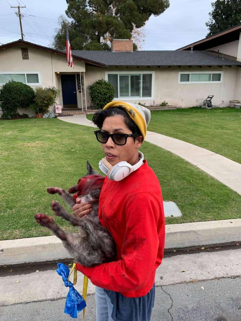 Mujer arrastra a perrito con su scooter eléctrico. ¿Qué hacer ante el abuso hacia los animales?