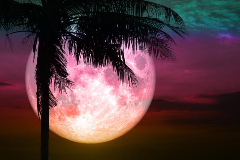 ¿Te perdiste la luna de sangre? No te preocupes, el universo aún nos reserva una sorpresa¿Te perdiste la luna de sangre? No te preocupes, el universo aún nos reserva una sorpresa¿Te perdiste la luna de sangre? No te preocupes, el universo aún nos reserva una sorpresa¿Te perdiste la luna de sangre? No te preocupes, el universo aún nos reserva una sorpresa¿Te perdiste la luna de sangre? No te preocupes, el universo aún nos reserva una sorpresa¿Te perdiste la luna de sangre? No te preocupes, el universo aún nos reserva una sorpresa¿Te perdiste la luna de sangre? No te preocupes, el universo aún nos reserva una sorpresa¿Te perdiste la luna de sangre? No te preocupes, el universo aún nos reserva una sorpresa