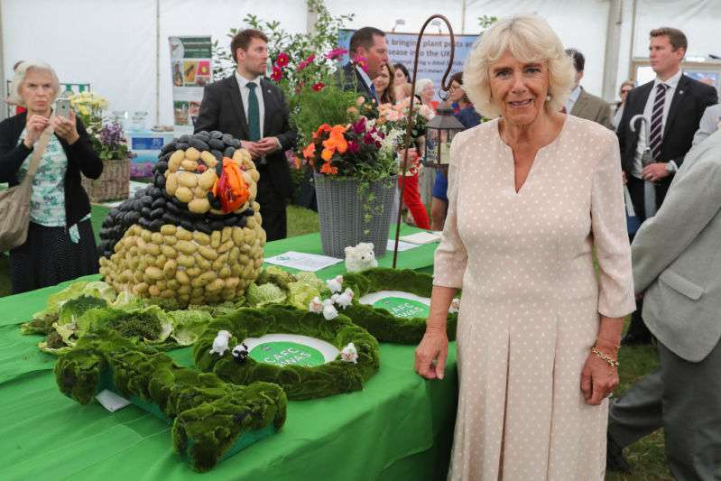 She's All Class! Duchess Camilla Swaggers Her Irresistible Beauty In Extremely Chic Polka Dot Dress As She Meets Zulu RoyaltyShe's All Class! Duchess Camilla Swaggers Her Irresistible Beauty In Extremely Chic Polka Dot Dress As She Meets Zulu Royalty