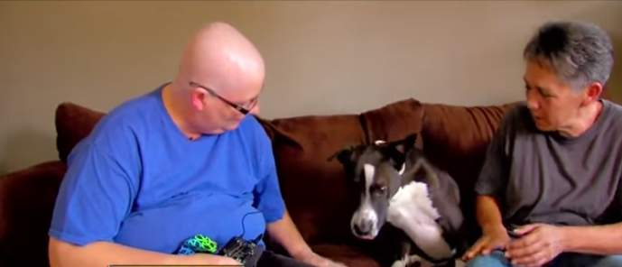 Favour Returned: Woman Said Rescued Dog Sniffed Out Her Breast Cancer And Saved Her Life